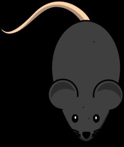 Mouse clipart clipart