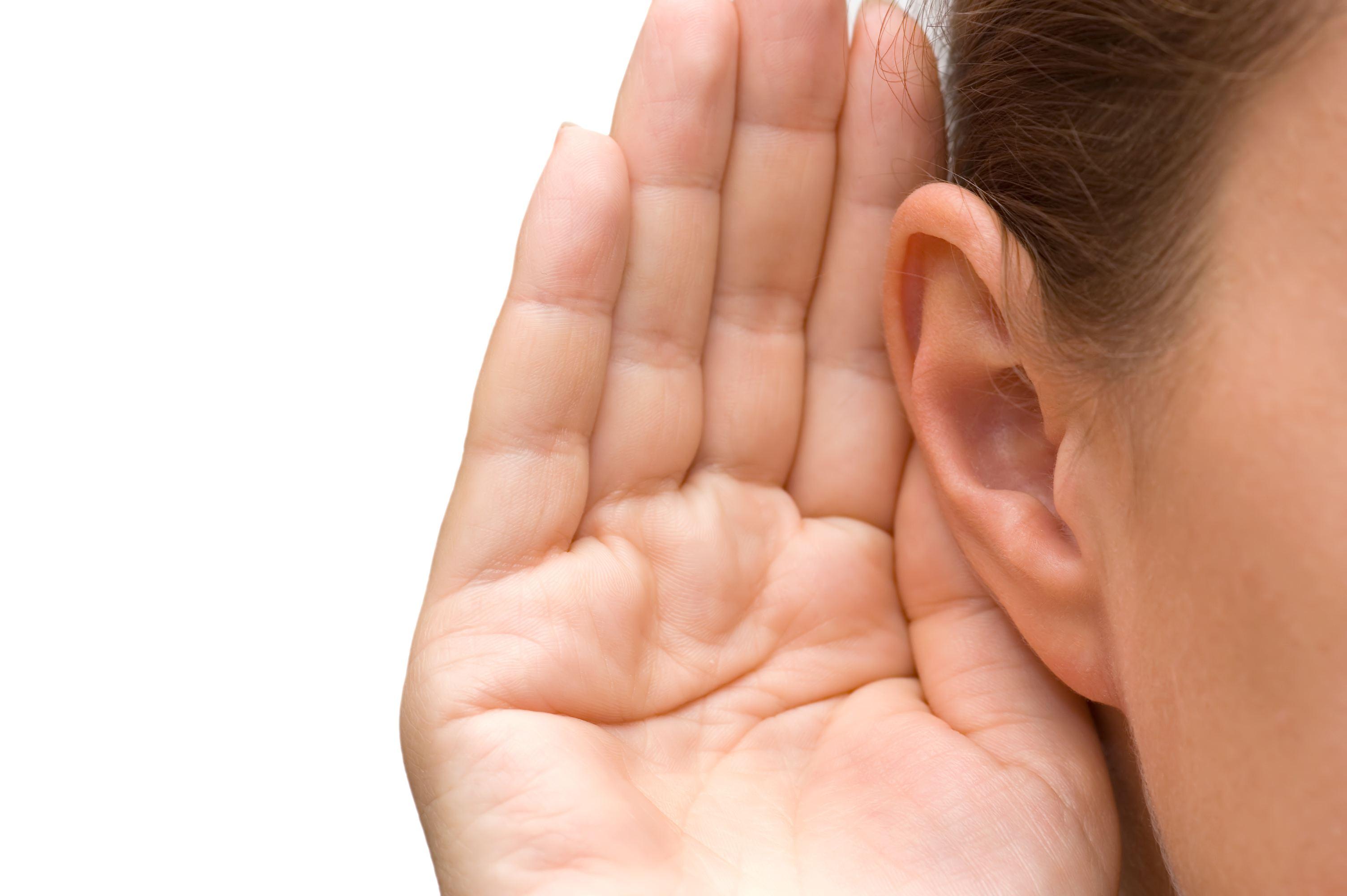 Whisper in ear clip art picture gallery