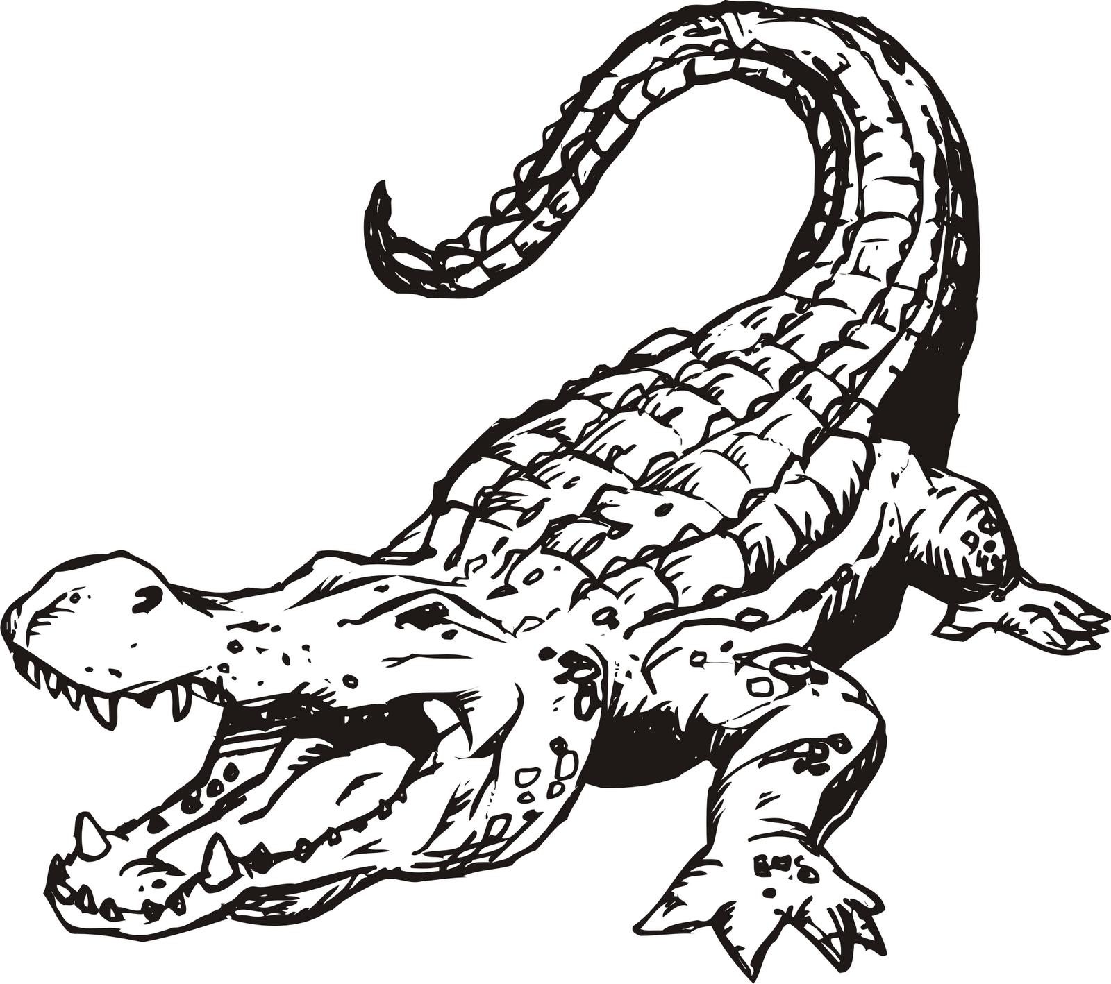 Alligator clip art free clipart clipart
