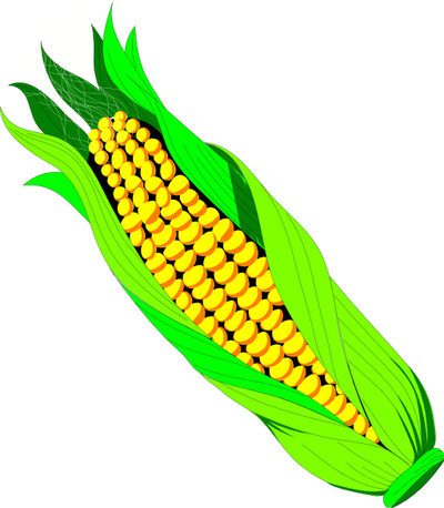 Free sweet corn clipart clip art image 2 of