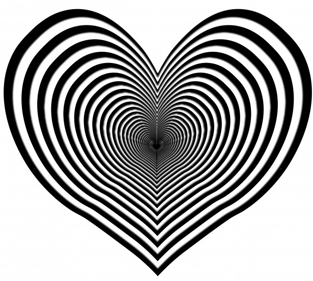 Heart zebra clipart free stock photo public domain pictures