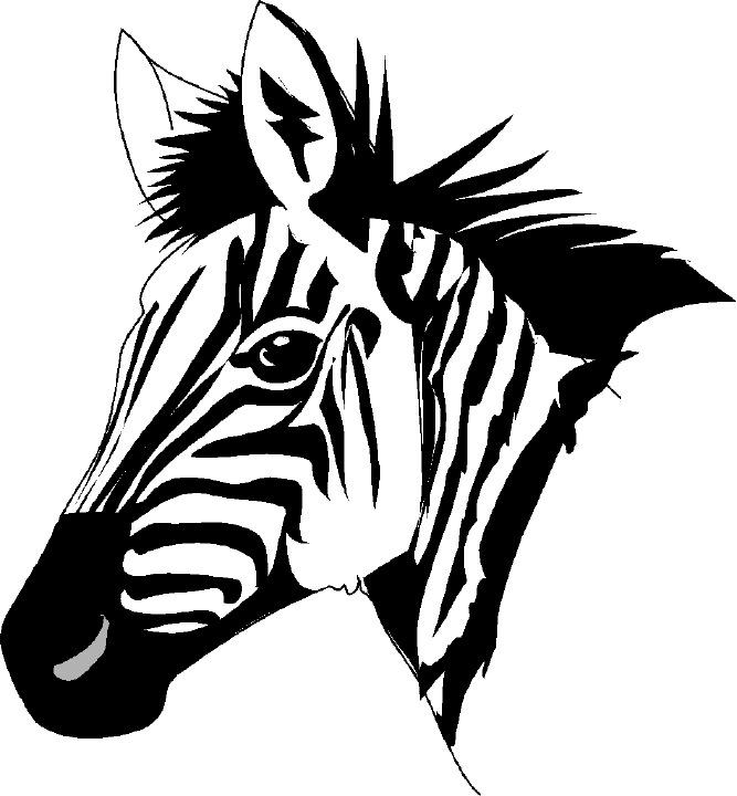 Zebra clipart free clipart