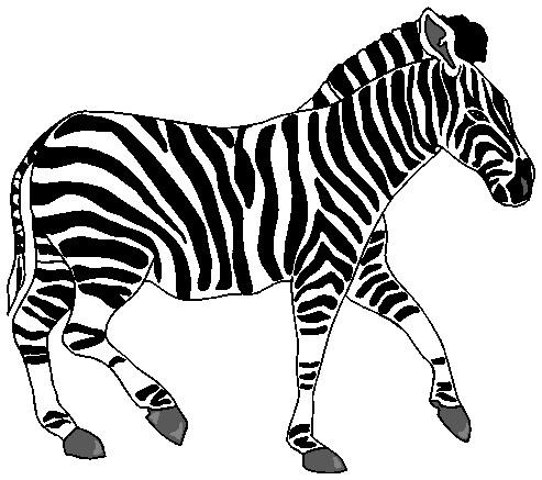 Zebras clip art