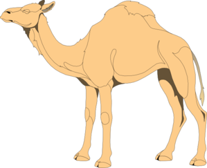 Camel clip art at vector clip art free
