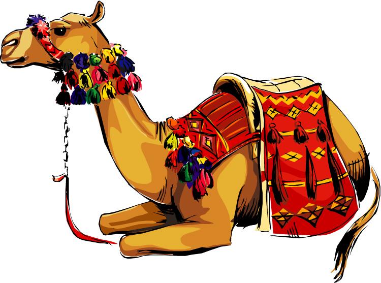 Camel clipart 4