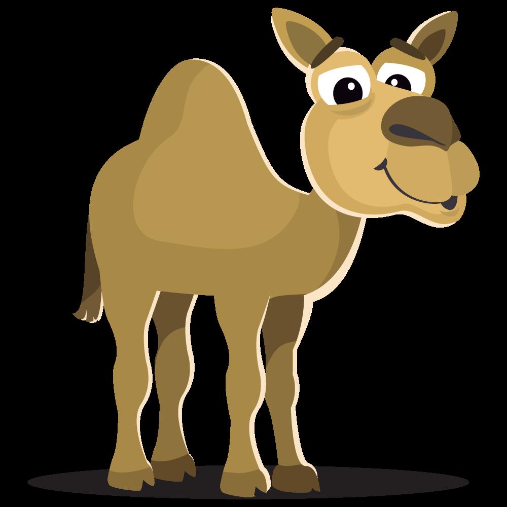 Camel large mammals clip art