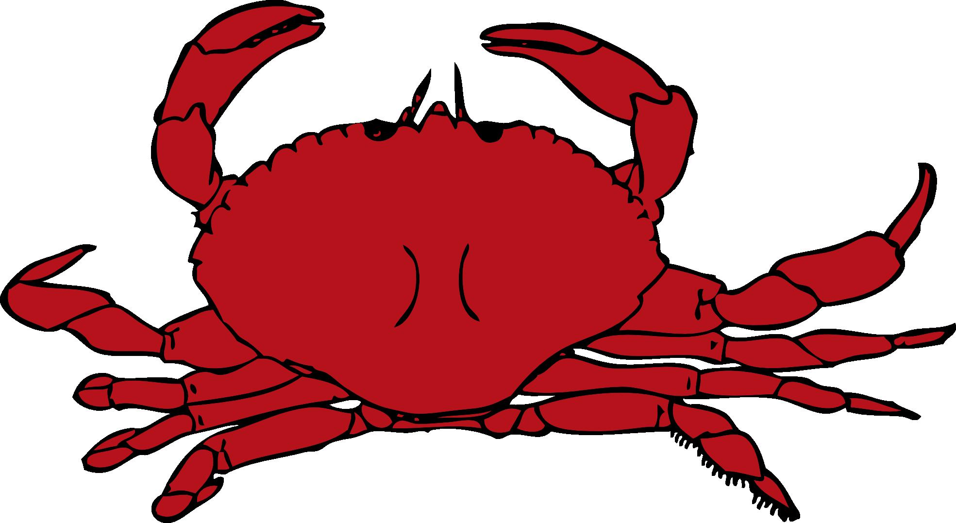 Crab clipart 0