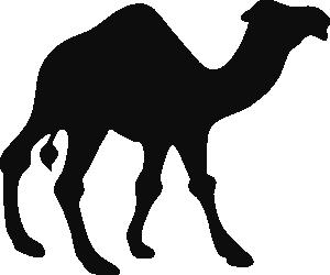 Walking camel clip art at vector clip art