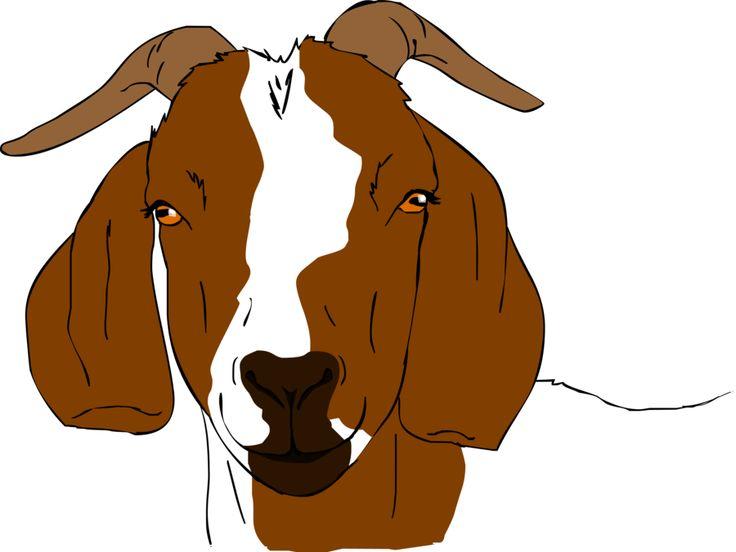 Boer goat clip art 2