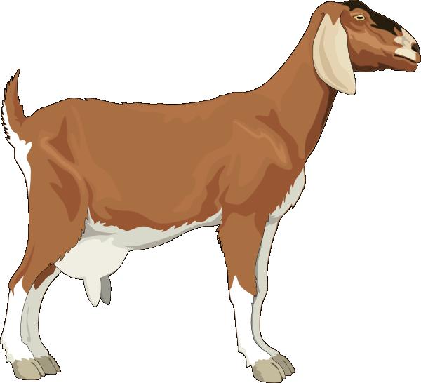 Goat clip art at vector clip art free