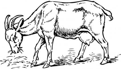 Goat clip art vector goat graphics