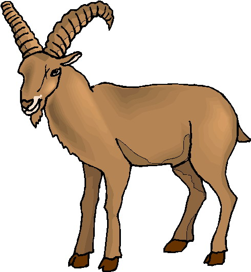 Goat clipart clipart