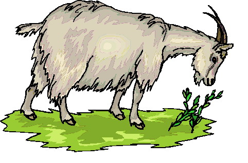Goats clip art 3