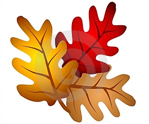 Fall leaves clip art clipart 2