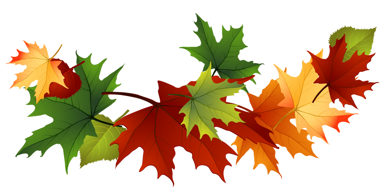 Fall leaves clip art free vector for free download about free 2 2