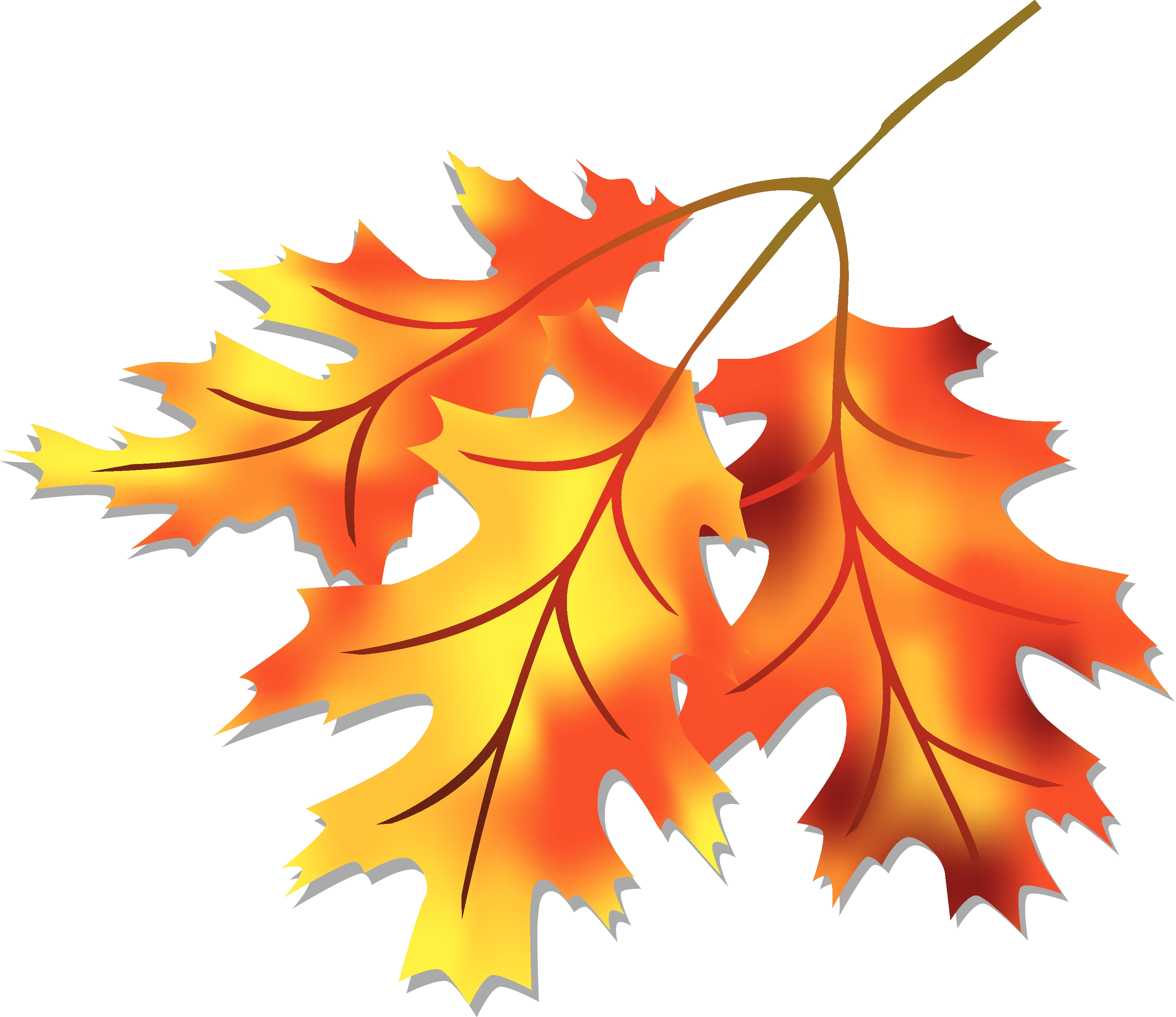 Fall leaves clip art free vector for free download about free 3 4