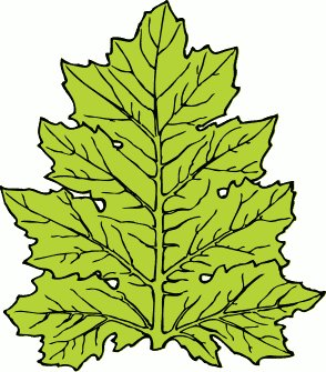 Free leaves clipart free clipart graphics images and photos 2