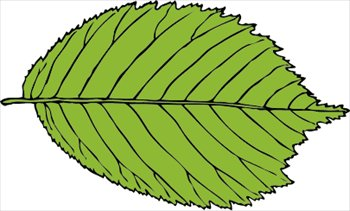 Free leaves clipart free clipart graphics images and photos
