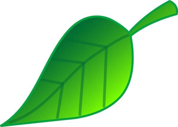 Green clip art leaves clipart