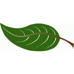Leaf animated leaves clipart 2