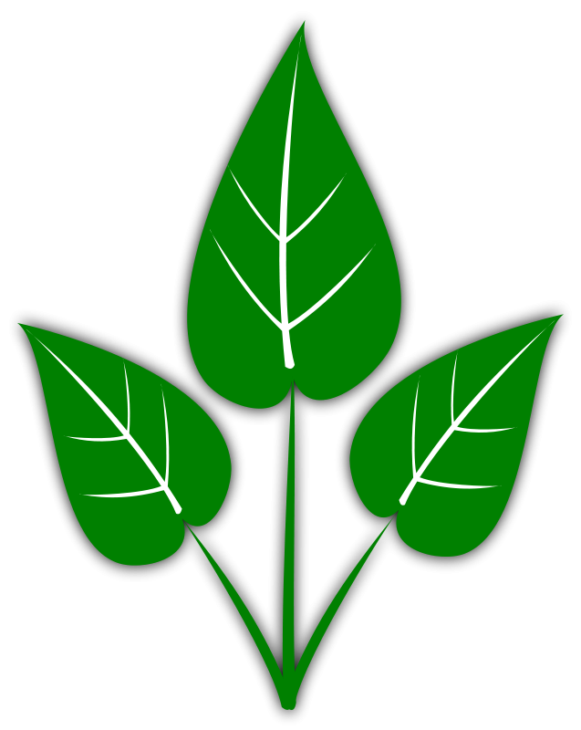 Leaf free leaves clipart free clipart graphics images and photos 2