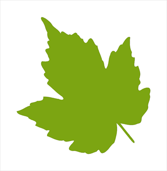 Leaf free leaves clipart free clipart graphics images and photos 3