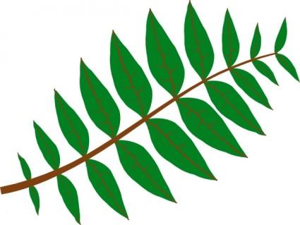 Leaf leaves clip art free vector 2