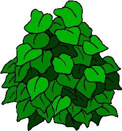 Leaves clip art 2