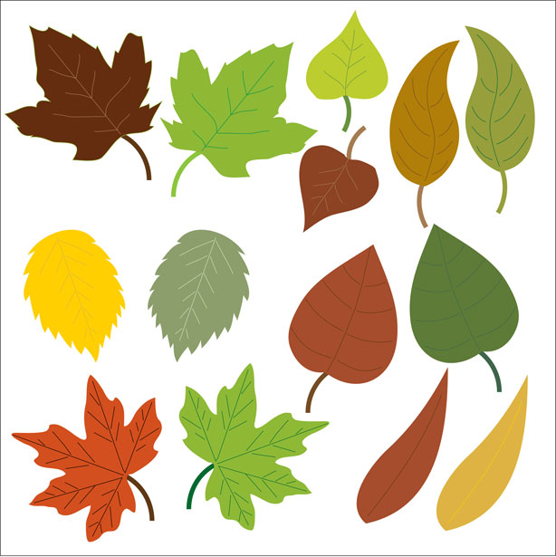 Leaves clipart free stock photo public domain pictures