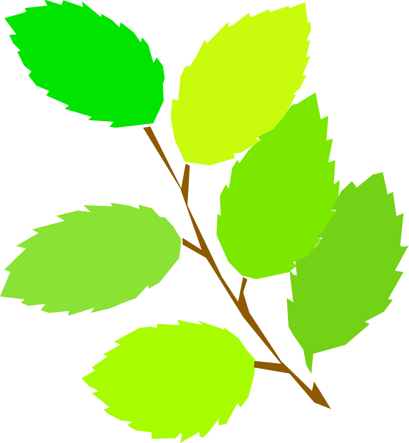 Leaves clipart vector clip art free design