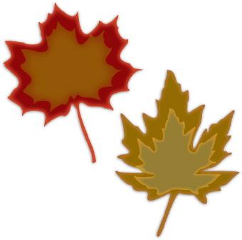 Leaves maple leaf clip art