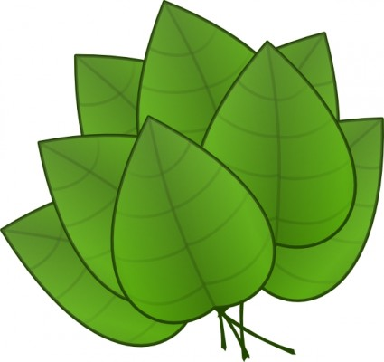 Palm leaves clip art free vector for free download about 5 free