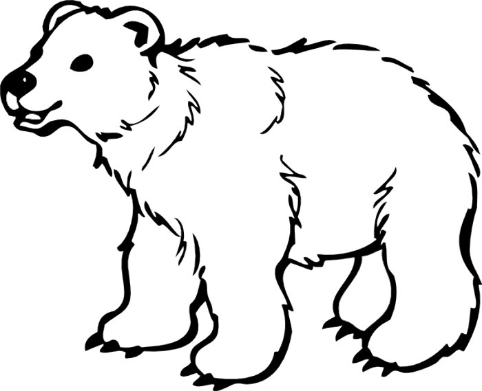 Free bear clip art polar bear clipart pics 2