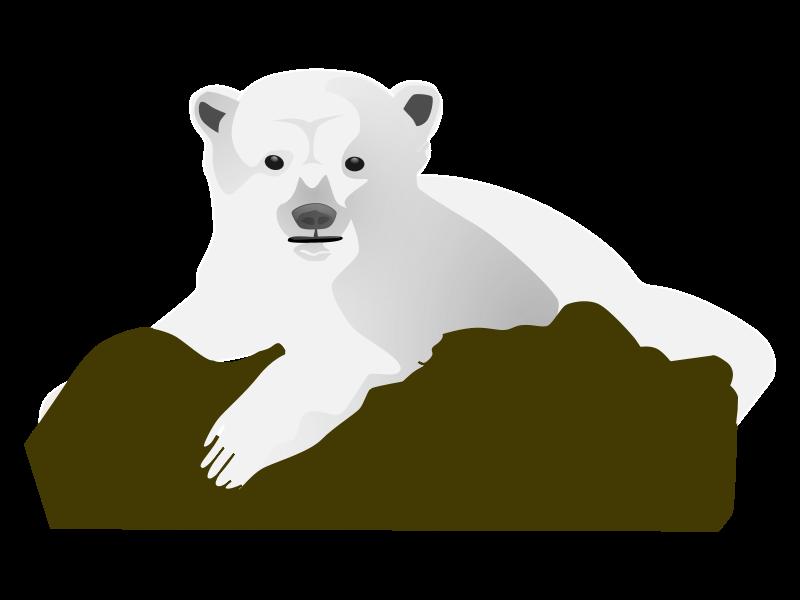 Polar bear bear clip art
