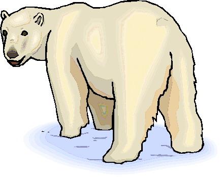 Polar bears clip art 2