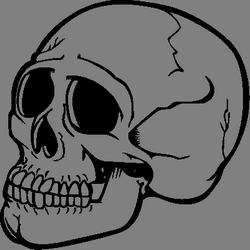Skeleton skulls images free download clipart