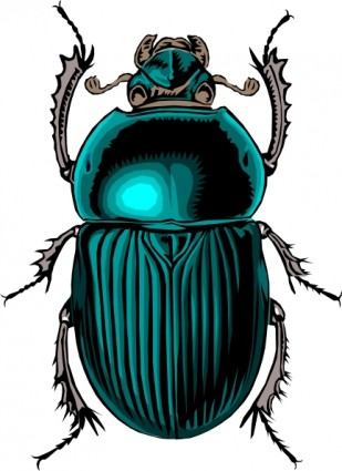 Beetle bug clip art vector clip art free vector for free