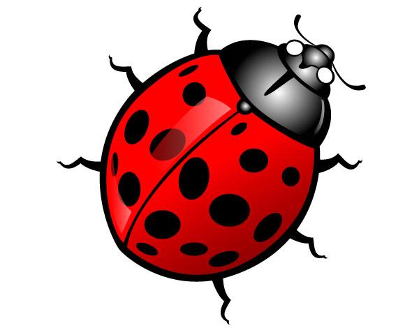 Bug Clip Art - Images, Illustrations, Photos