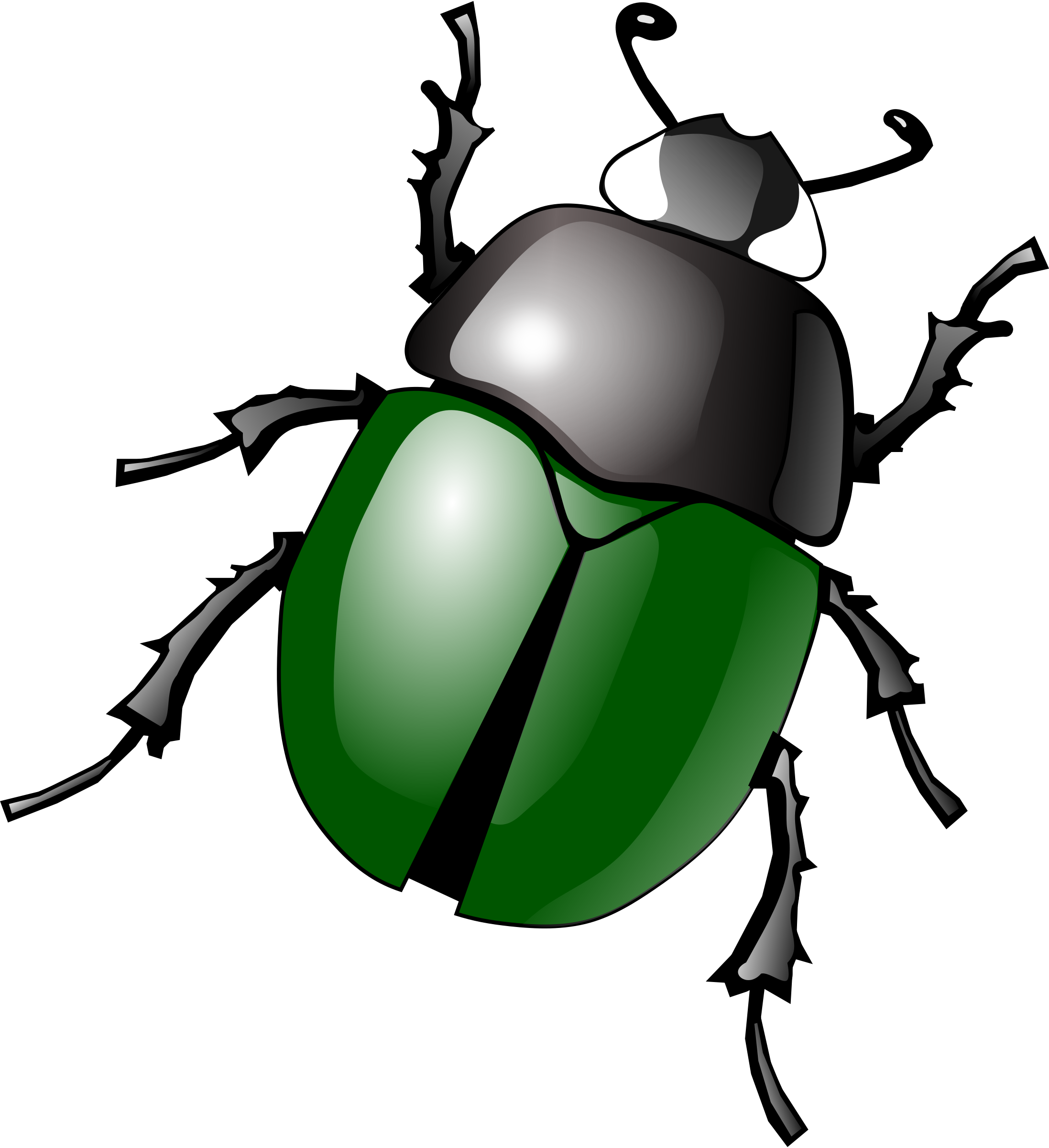 Bugs images free pictures bug clip art