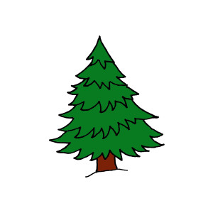 Clip art pine tree free clipart images