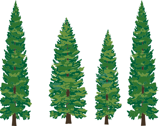Free clip art pine trees free clipart images