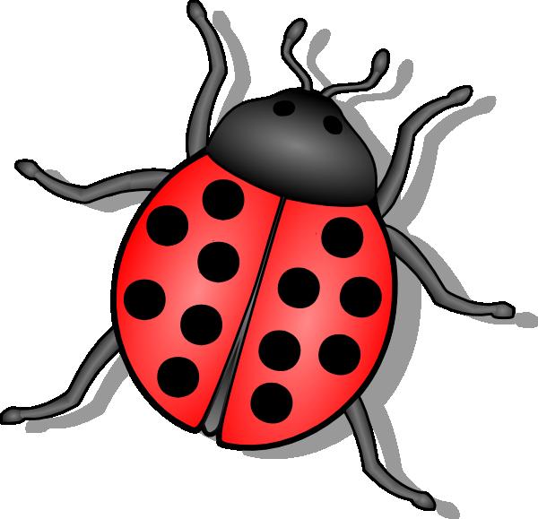 Lady bug clip art at vector clip art