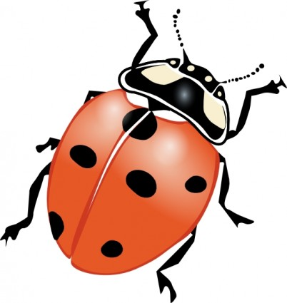 Lady bug clip art free free vector for free download about