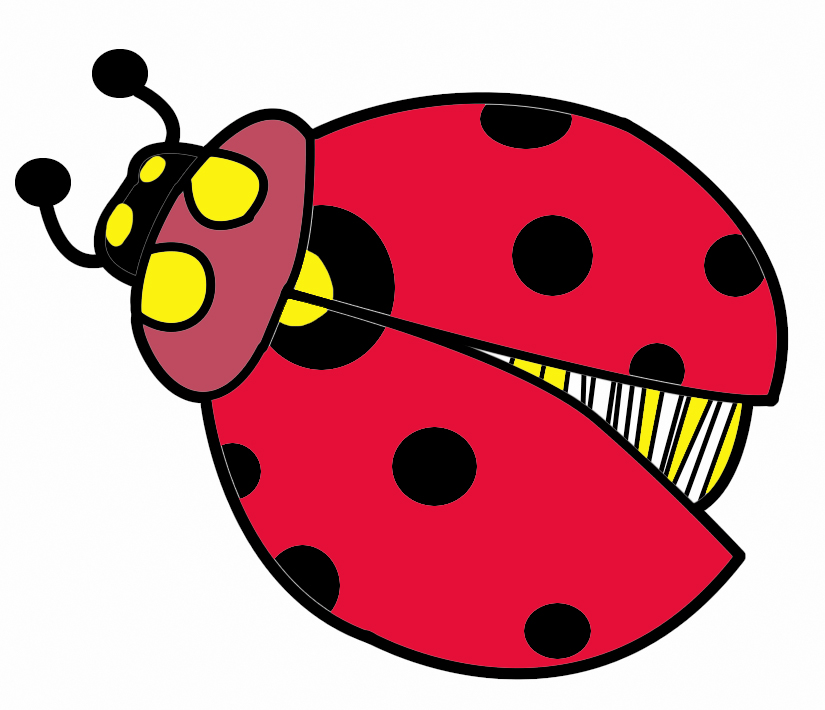 Lady bug clipart free cliparts clipart clipart