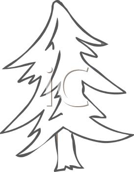 Pine tree clip art 5