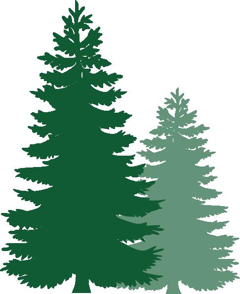 Pine tree free clipart
