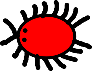 Red bug clip art at vector clip art