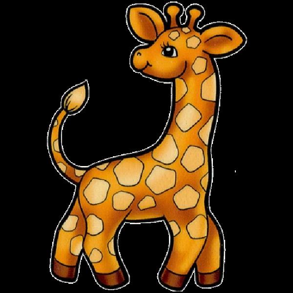 Baby giraffe pictures giraffe images clip art