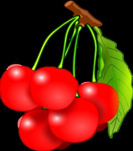Cherry red cherries clip art at vector clip art