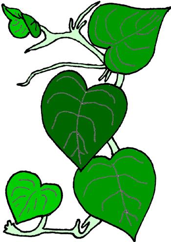 Flower vine clip art